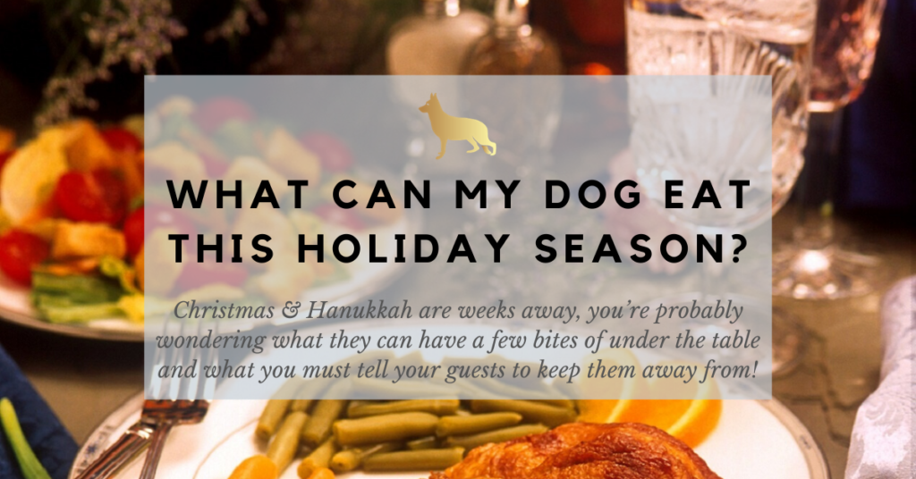 What Can My Dog Eat This Holiday Season